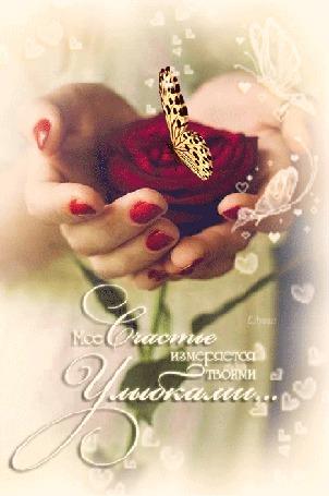 Анимация В руках роза на которой сидит бабочка/Мое счастье измеряется твоими улыбками/Е Лузан/