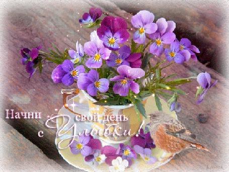 Анимация цветы в чашечке на фоне сидит птичка/Начни свой день с улыбки/ (© qalina), добавлено: 02.08.2015 22:16