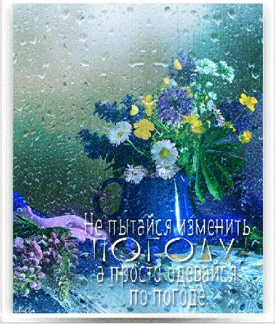 Анимация Букет летних цветов в кувшине на фоне капель дождя (Не пытайся изменить Погоду, а просто одевайся по погоде) автор АссОль