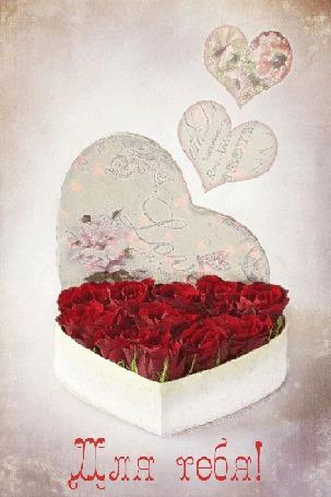 Анимация коробочка в форме сердечка наполненная розами/для тебя/ (© qalina), добавлено: 03.08.2015 21:13