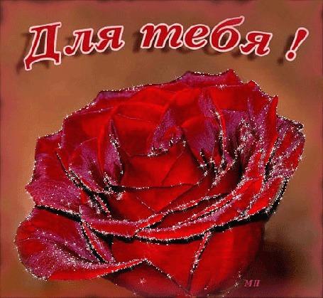 Анимация Красная роза / для тебя/ (© qalina), добавлено: 04.08.2015 19:46