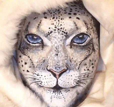 Анимация Боди арт лицо превращает в кошку (© phlint), добавлено: 08.08.2015 08:24