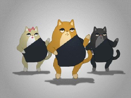 Анимация Кошки танцуют в стиле клипа Beyonce (© Seona), добавлено: 08.08.2015 13:12