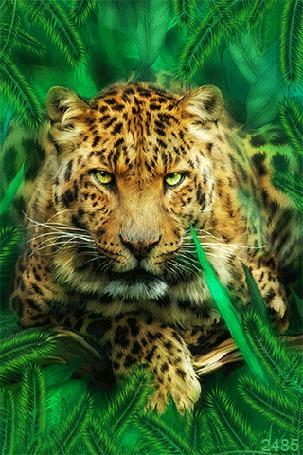 Анимация Тигр на фоне зелени с зелеными глазами