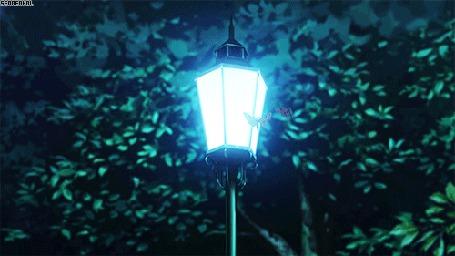 Анимация Мотыльки летают у фонаря