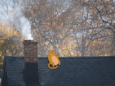 Анимация Кошка сидит на крыше дома и пьет кофе