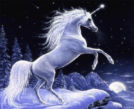 Анимация Единорог в зимнем лесу (© qalina), добавлено: 14.08.2015 20:43