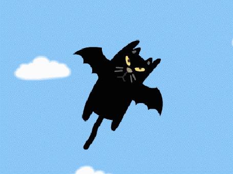 Анимация Черный кот и крыльями летит среди облаков (© Seona), добавлено: 15.08.2015 00:12