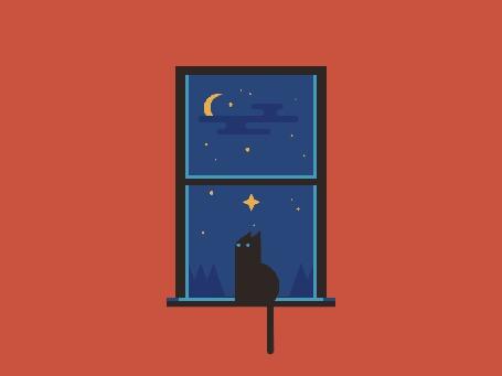 Анимация Кошка сидит на подоконнике, смотря на ночное небо