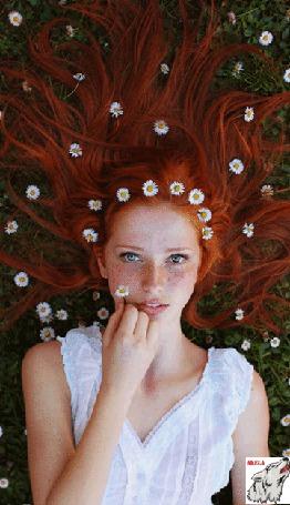 Анимация Рыжеволосая девушка лежит на траве с развевающимися рыжими волосами, усеянными ромашками и держит в руке белую ромашку (© Akela), добавлено: 20.08.2015 03:49