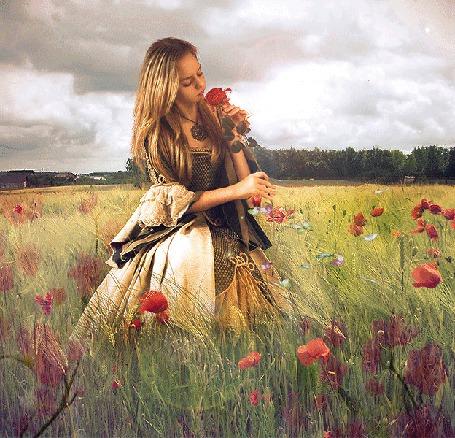Анимация Девушка в степи среди цветов и бабочек (© phlint), добавлено: 21.08.2015 09:08