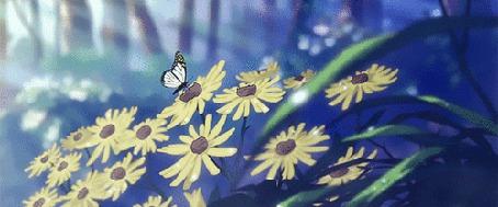 Анимация Капля воды стекает с листа, отрывок из аниме Красноволосая принцесса Белоснежка / Akagami no Shirayukihime
