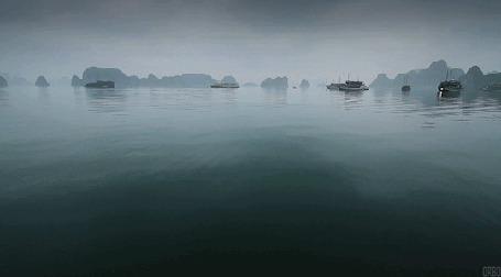 Анимация Течении реки туманным утром (© Seona), добавлено: 22.08.2015 14:58