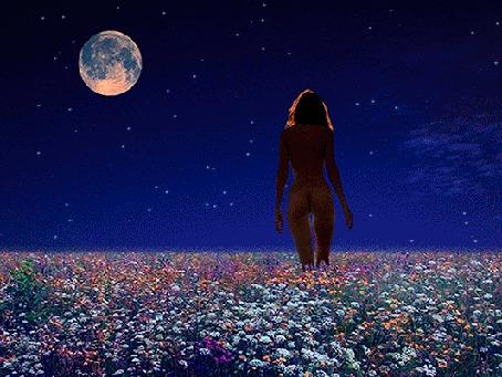 Анимация Обнаженная девушка идет по лугу на фоне ночного неба (© Миропия_Мира), добавлено: 23.08.2015 21:05