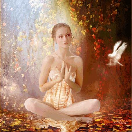 Анимация Девушка сидит на опавших листьях, на колени к ней прилетает голубь, автор Mira (© svetla4ok), добавлено: 25.08.2015 11:12