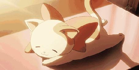 Анимация Мяукающий котенок с большим бантом на шее, лежит на животике и виляет хвостом (© zmeiy), добавлено: 06.09.2015 00:30