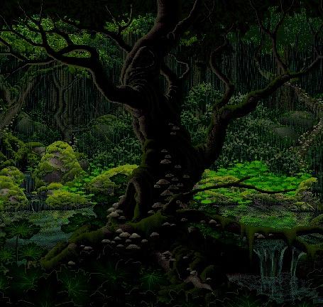 Анимация На переднем плане большое дерево в лесу, покрытое мхом и с растущими на нем грибами, идет дождь, текут ручьи с небольшим каскадом водопадов (© Akela), добавлено: 06.09.2015 01:20