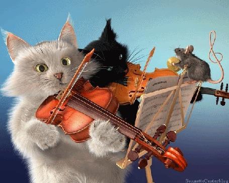 Анимация Котята и мышка играют на музыкальных инструментах