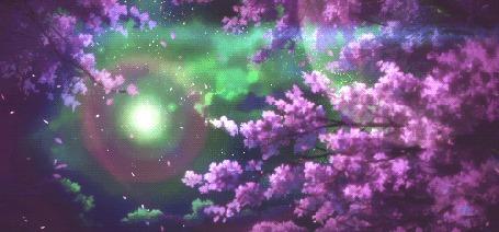 Анимация Летящие лепестки с цветущей сакуры на фоне неба с Луной (© Solist), добавлено: 07.09.2015 12:45