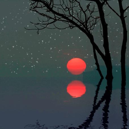 Анимация Мерцающие звезды на ночном небе и луна, с отражением в воде