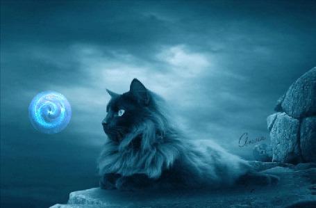 Анимация Пушистый кот, лежит на скале, на фоне облачного неба, и смотрит на магический шар