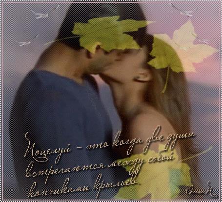 Анимация Парень и девушка целуются на фоне опадающих листьев, фраза Поцелуй - это когда две души встречаются между собой кончиками крыльев, автор Ольга П