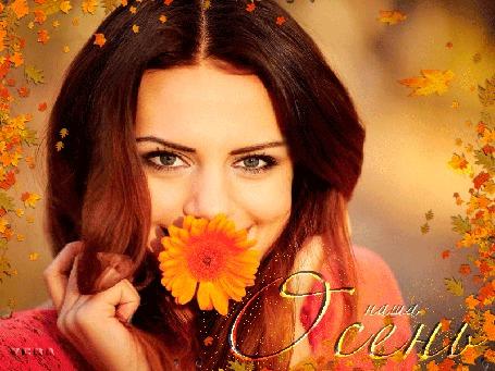 Анимация На фоне падающих желтых листьев кареглазая девушка держит во рту оранжевую герберу и улыбается, (Наша осень), автор Vera