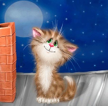 Анимация Влюбленный кот мечтатель сидит на крыше под Луной, у него из груди выскакивают красные сердечки