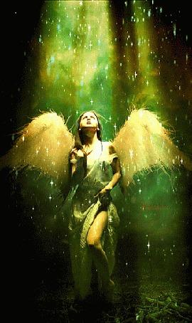 Анимация Девушка-ангел в лучах света в лесу (© Solist), добавлено: 25.09.2015 13:05
