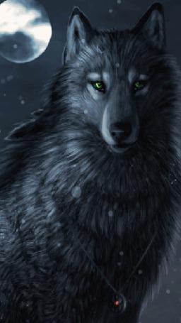 Анимация Волк с мерцающим медальоном на шее (© Solist), добавлено: 26.09.2015 11:48