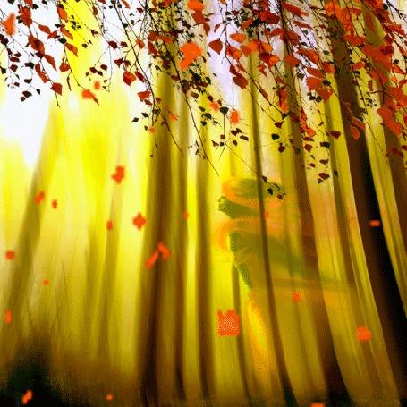 Анимация Девушка бежит по лесу сквозь осенний листопад (© Миропия_Мира), добавлено: 27.09.2015 15:47