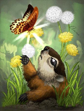 Анимация Суслик смотрит на бабочку сидящую на цветке и улыбается (© Bezchyfstv), добавлено: 29.09.2015 00:22