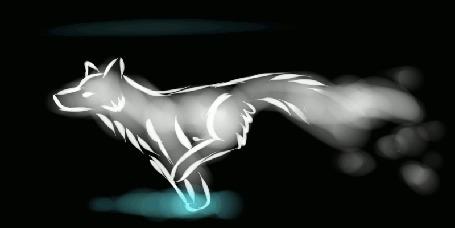 Анимация Бегущий в темноте призрачный волк (© Solist), добавлено: 02.10.2015 11:16