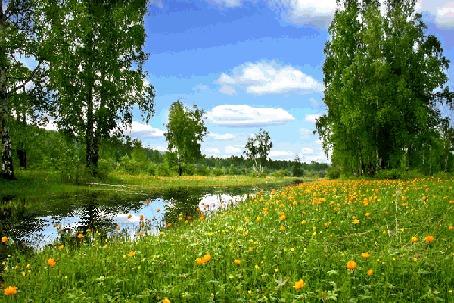 Анимация Летний яркий луг с цветами и речка (© Ловетта), добавлено: 04.10.2015 14:06