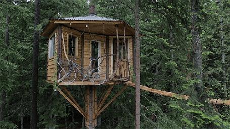 Анимация Дом на дереве, с которого можно спуститься на велосипеде (© Anatol), добавлено: 04.10.2015 22:32