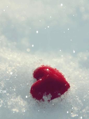 Анимация Красное сердечко лежит в снегу, сверху падают снежинки, Т. 3331