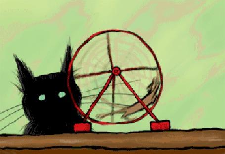 Анимация Черный кот наблюдает, как мышь бегает в колесе (© МилаДЖИ), добавлено: 07.10.2015 17:14