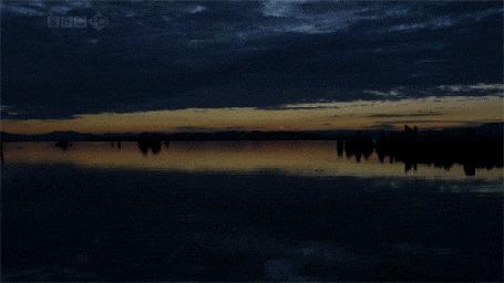 Анимация Рассвет над спящей рекой (© Anatol), добавлено: 07.10.2015 21:03