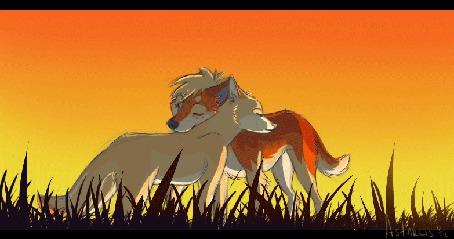 Анимация Любовь диких собак Динго, By Astarcis (© zmeiy), добавлено: 08.10.2015 15:08