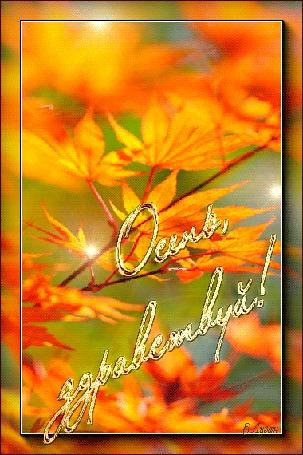Анимация Желтые листья на ветке подсвечиваются солнечными бликами, (Осень? здравствуй!), автор Е Лузан (© Solnushko), добавлено: 09.10.2015 12:07