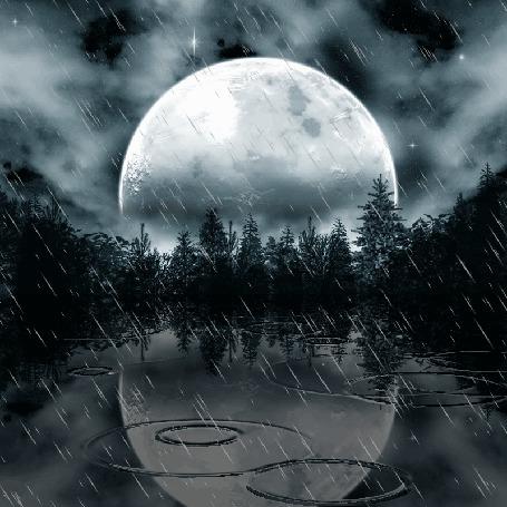 Анимация Дождь над озером (© zmeiy), добавлено: 10.10.2015 10:45