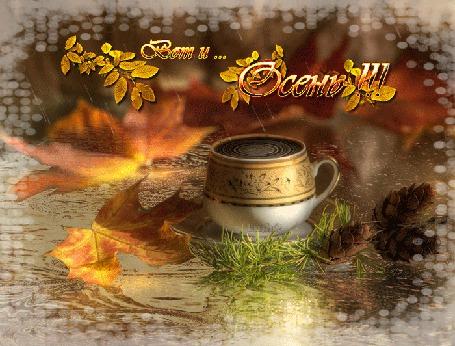Анимация Чашка кофе под дождем рядом с листьями и шишками (Вот и. Осень!) Lush@ (© Natalika), добавлено: 10.10.2015 12:38