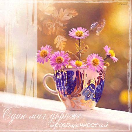 Анимация Бабочка порхает над ромашками в чашке (Один миг дороже драгоценностей) Лилия