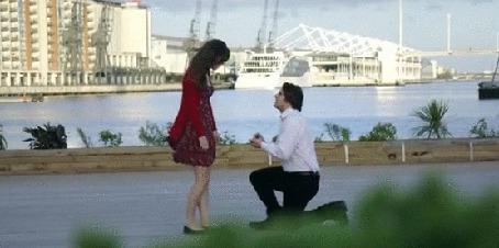 Анимация Парень делает девушке предложение. стоя на коленях, в это время пробегающий мимо мужчина бросает ей в лицо торт