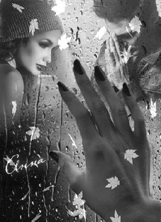 Анимация Женская рука гладит по дождливому стеклу образа девушки и мужчины, летят осенние фантомные листья (автор Анна)