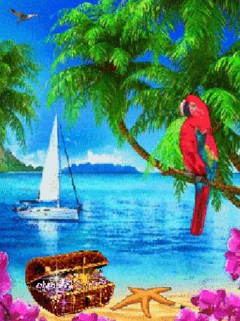Море пальмы ночь