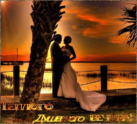 Анимация Влюбленные на берегу в закате солнца (Теплого Душевного вечера!), R-Oksan@