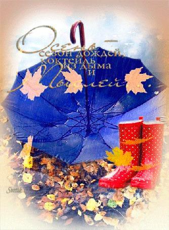 Анимация Сапоги и зонтик для дождливой погоды (Осень - сезон дождей, коктейль из дыма и Мыслей.) Svetik (© Natalika), добавлено: 21.10.2015 10:05