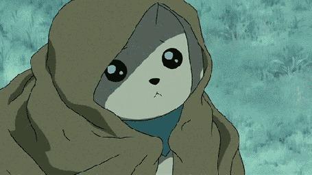 Анимация Забавное существо Терримон снимает с себя накидку, мультфильм аниме Дигимон