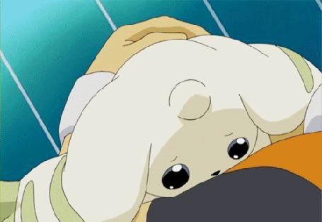 Анимация Терримон грустно смотрит на своего хозяина, который сильно плачет, мультфильм аниме Дигимон